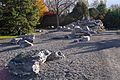 Alpine Garden (Montreal Botanical Garden) 11.jpg