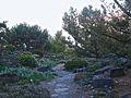 Alpine Garden (Montreal Botanical Garden) 12.jpg