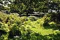 Altar Stones and Blacksmith's Field - geograph.org.uk - 1458227.jpg