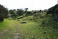 Altarnun, bridleway by Carne Down - geograph.org.uk - 511735.jpg