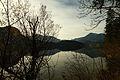 Altausseer See 78905 2014-11-15.JPG