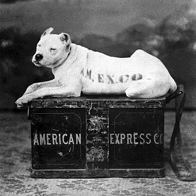 The American Express logo in 1890 depicting a watchdog lying on top of a shipping trunk to symbolise trust and security Amer express dog 1890.jpg