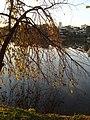 Amoreira - panoramio.jpg