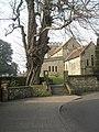 An ordinary tree^ - geograph.org.uk - 698075.jpg