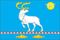 Anadyrsky District Flag.png