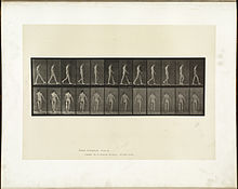 Animal locomotion. Plate 546 (Boston Public Library).jpg
