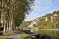 Anseremme Meuse R01.jpg