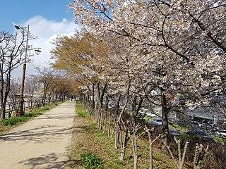 Anyangcheon Stream Walkway