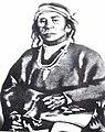 Apacs Cochise.jpg