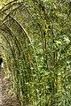 Arch (8042586765).jpg