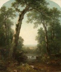 Forest Stream with Vista