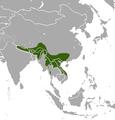 Assam Macaque area.png