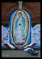 At The Mercy Of Guadalupe (1317697505).jpg