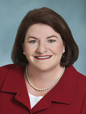 California State Assembly election, 2014 - Image: Atkins Headshot