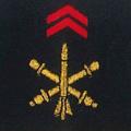 Attribut fourreaux-artillerie.png