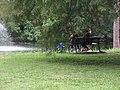 Audubon Park New Orleans St Charles Side 3 July 2020 09.jpg