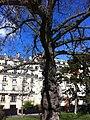 Avenue Foch, Paris, France - panoramio (7).jpg