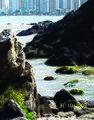 BALNEÁRIO CAMBORIÚ (Pontal Norte), Santa Catarina, Brasil by Nivaldo Cit Filho - panoramio (12).jpg
