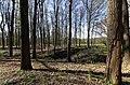 Baarn - Ravensteinselaan - Landgoed Groeneveld 4 - View towards Ossenstal & Moestuin.jpg