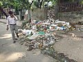 Bad smell dustbin on road of dhaka shantinagar.jpg