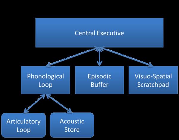 Working Memory Wikiwand