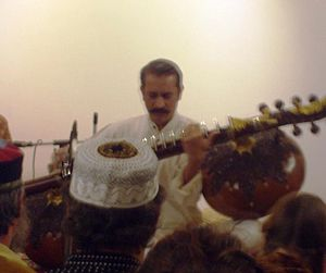Rudra veena - Bahauddin Dagar playing rudra veena in the South Indian posture