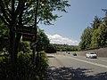 Bangor, UK - panoramio (247).jpg