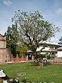 Bayombong,NuevaVizcayaCathedraljf0001 07.JPG