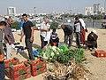 Beer Sheva Bedouin Market 25.jpg