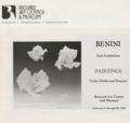 Benini 1982 solo exhibition at the Brevard Art Center & Museum, Brevard, Florida.png
