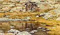 Bergtocht van parkeerplaats bij centrale Malga Mare naar Lago Lungo. Waterstromen over het bergplateau 08.jpg