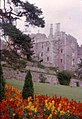 Berkeley Castle from the gardens - geograph.org.uk - 28023.jpg