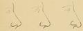 Bertillon - Identification anthropométrique (1893) 063.2.png