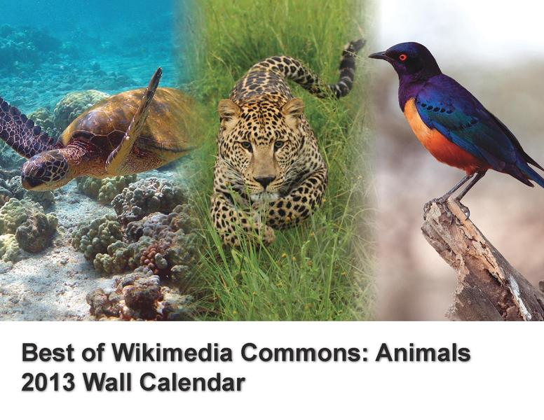 File:Best of Commons Animals 2013.pdf