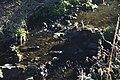 Bezejmenný levostranný přítok Bystřice (Ohře tributary) 1471-1.jpg