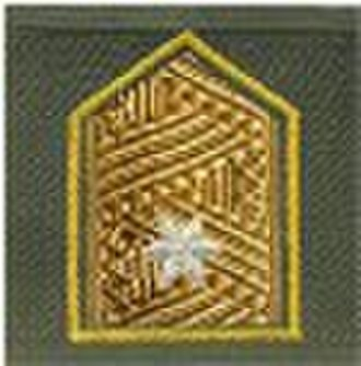 Ranks of the Austrian Bundesheer - Image: Bgdr Anzug 75 03 AT