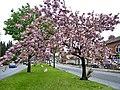 Birmingham Spring - panoramio (2).jpg