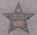 Birmingham Walk of Stars Murray Walker.jpg