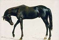 Black Horse oil c.1859 Albert Bierstadt.jpg