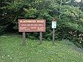 Blackwater Falls State Park WV 10.jpg