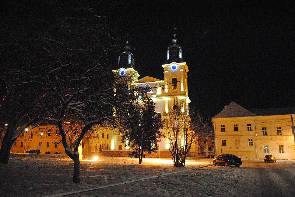 Blaj Catedrala greco catolica (3)