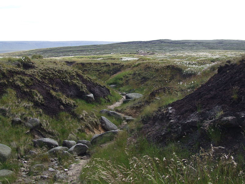 File:Bleaklow6345.JPG