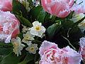 Blumenstrauß mit Tulpen und Narzissen 3.JPG