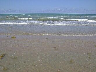 Boca Chica State Park - Image: Boca Chica TX