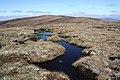 Bog pools on Carn na Cloiche - geograph.org.uk - 1260954.jpg