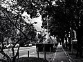 Bolzano City Image - Photo by Giovanni Ussi - In Black and White 17.jpg