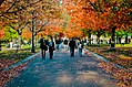 Boston Common in fall.jpg