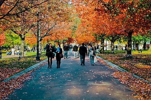 Boston Common in fall
