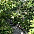 Botanisk-Have-Kbh-Stenhoj.jpg