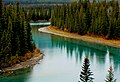 Bow River Banff National Park.jpg